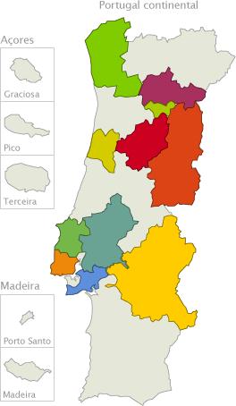 mapa e rotas de portugal Infovini | O portal do vinho português | Rotas do vinho mapa e rotas de portugal